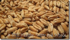 sprouted_grain